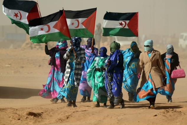 A confidential UN report last week accused both Morocco and the Polisario Front of ceasefire violations in Western Sahara after they sent security forces and...